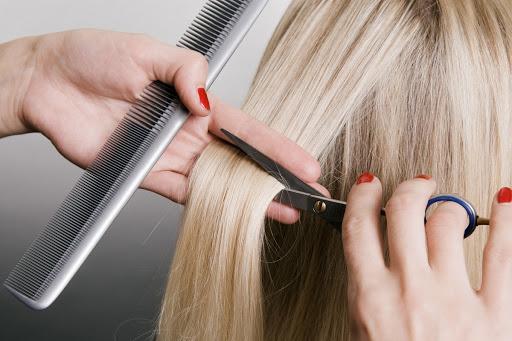 Специальность парикмахера: курсы или училище?