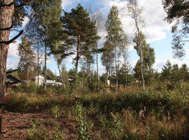 Земельные участки в Всеволожском районе Ленинградской области